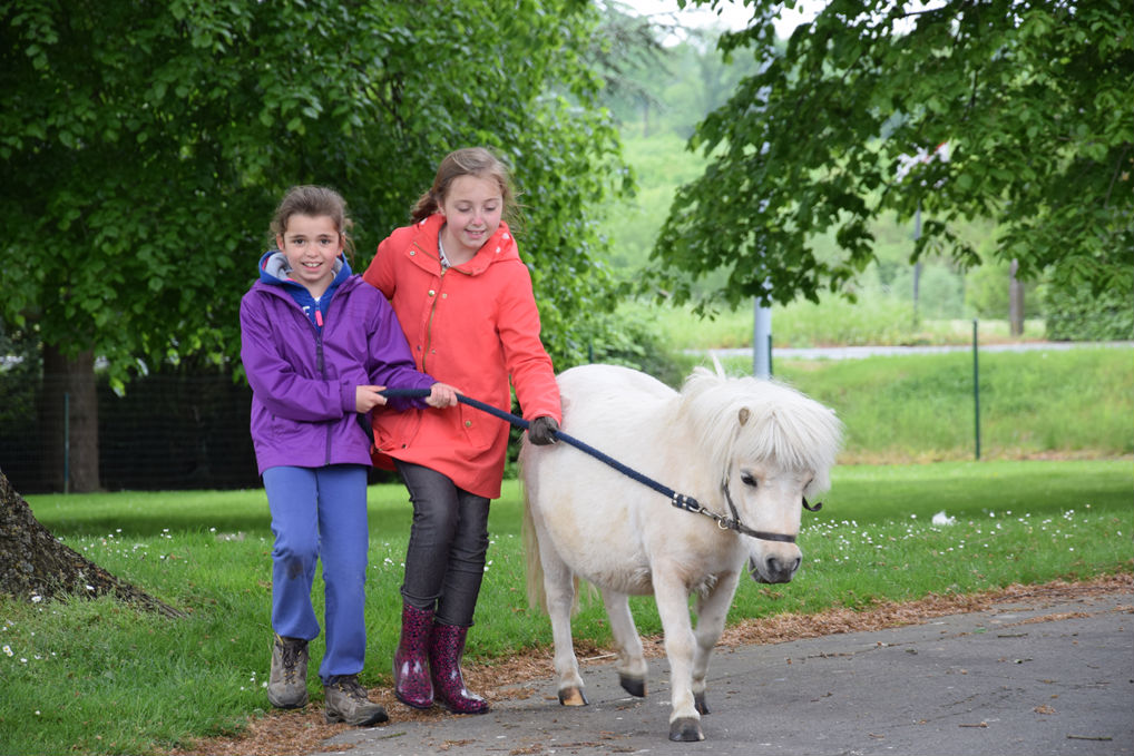 Twee meisjes wandelen met een pony in West- Vlaanderen Tiegem